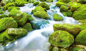 中央アルプスの伏流水